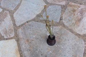 core flower vase ¥2,000